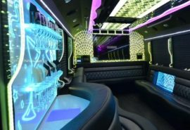 Ann Arbor Party Bus Rental | Ann Arbor Party Bus Fleet