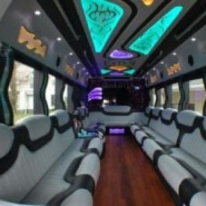 Ann Arbor Party Bus Rental Diamond Interior