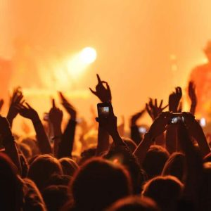Michigan Concert Limo Rental