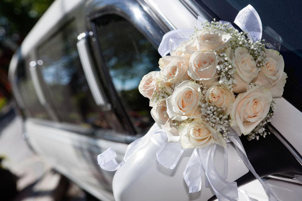 Michigan Wedding Guests Party Bus Rental